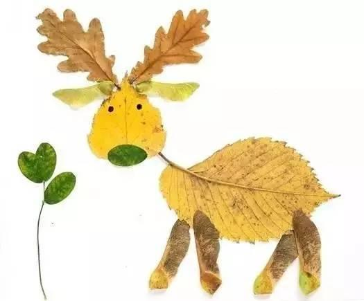 比如说今天我们来     贴一个小动物     ▼  叶子只是简单的排列