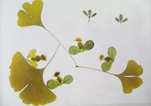手工树叶做的小动物