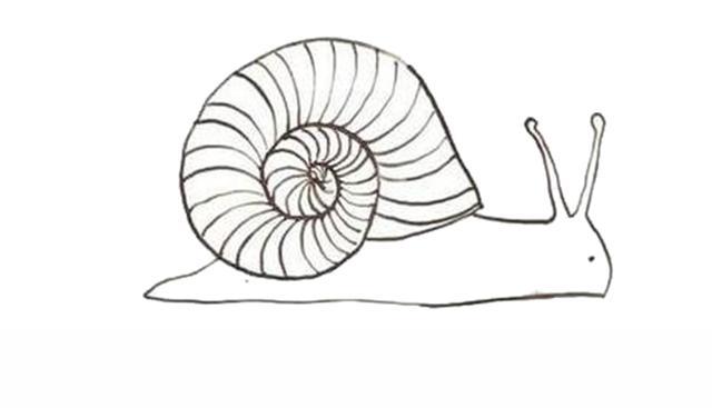 宝宝简笔画,儿童绘画,男宝女宝都爱的蜗牛