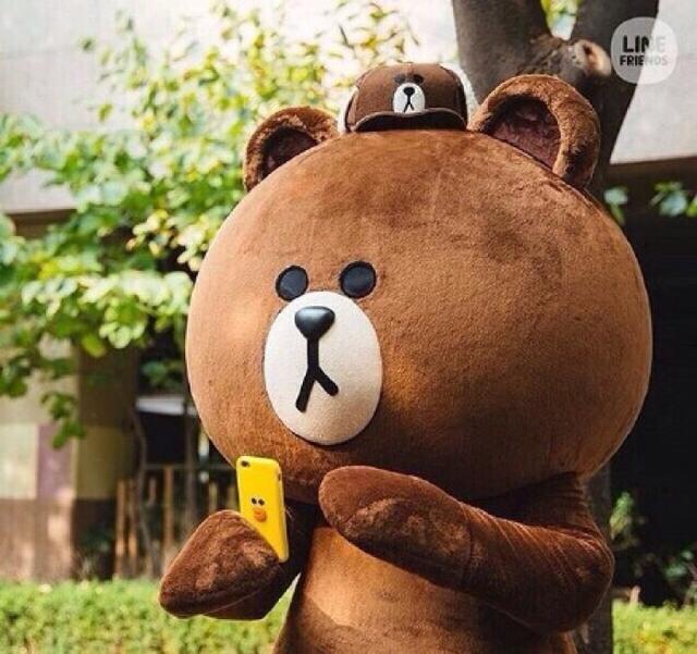 布朗熊相信有不少的人知道,可爱而且呆呆的.
