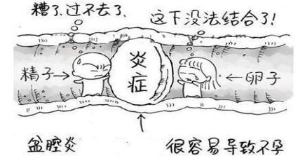鹊桥怎么画简笔画