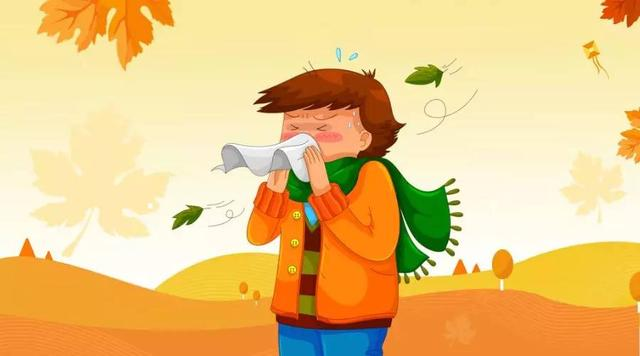 为啥有的人特别容易感冒?玄机在这里!