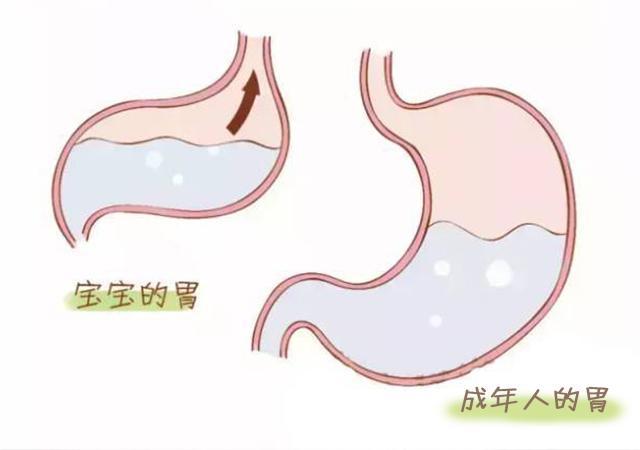 刚刚出生的婴儿吐奶正不正常 最近宝宝总是吐奶图片