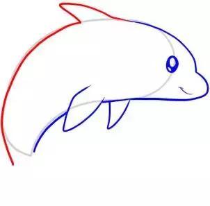 简笔画|5款可爱的小海豚教程