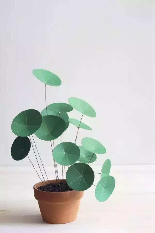卡纸,剪刀,固体胶,铅笔     制作步骤如下:     墨绿色的小荷叶,用
