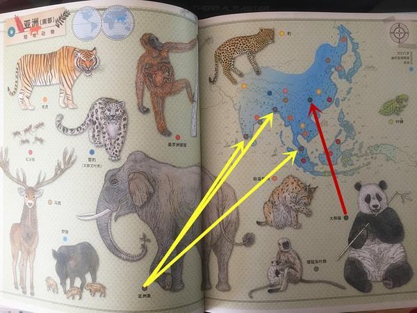 绘本解读丨《动物在哪里?》 - 宝宝爱读书 - 妈妈帮